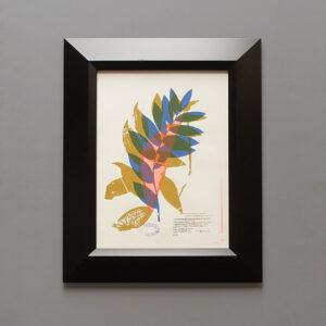 oresky-polygonatum-botanical-serigraph