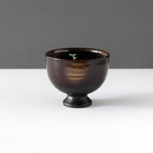 succulents-chocolate-brown-footed-matcha-bowl