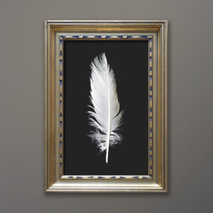 feather-gold-gilt-wood-frame